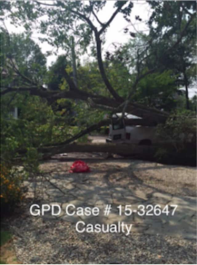 A Greenwich Police Department photo taken the day of the accident shows the fallen tree on the vehicle that the victim was exiting at the time he was struck.