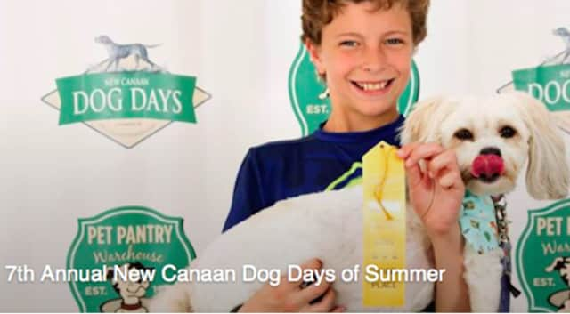 7th Annual New Canaan Dog Days of Summer To Be Held May 22