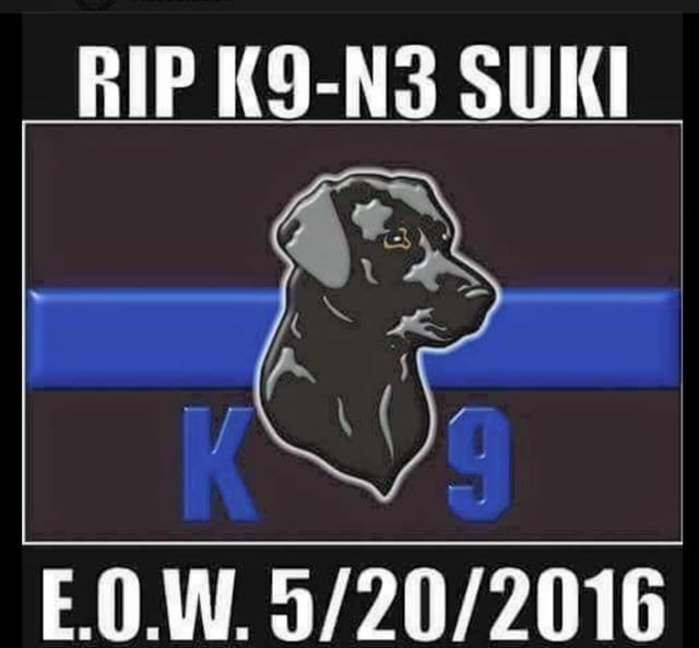 Westchester County Police are investigating the death of Suki, a black Labrador retriever that was found unresponsive in a patrol vehicle.