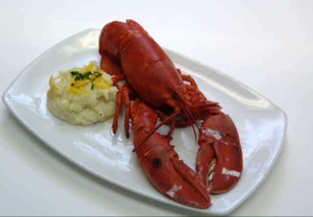 A new lobster restaurant will open this month in Stamford.