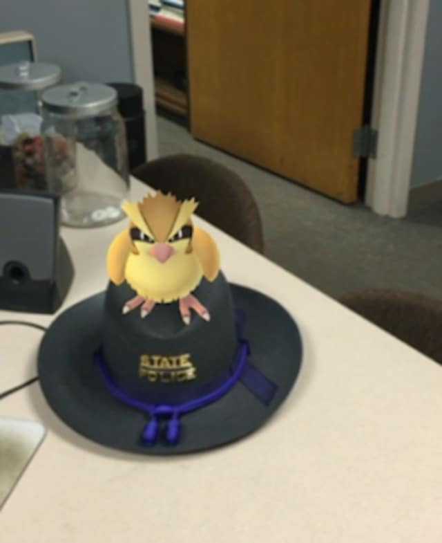 Connecticut State police offered a few tips for all of the crazed Pokemon Go players.