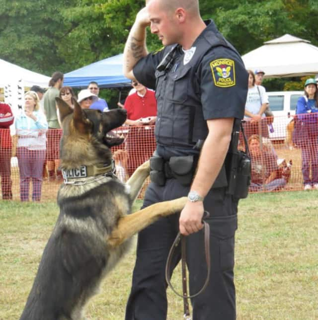 A Monroe officer works with his K-9 partner at a recent K-9 Karnival sponsored by the Trap Falls Kennel Club.