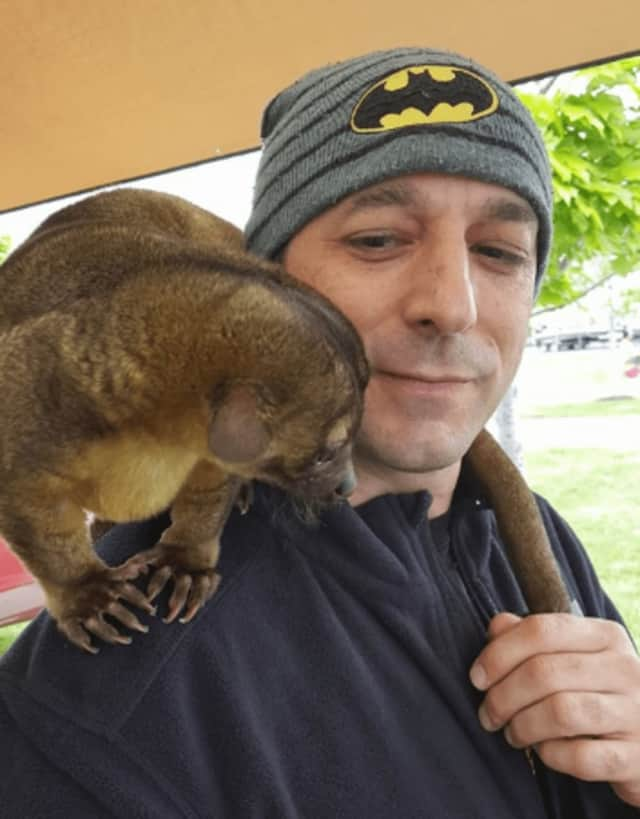 Hasbrouck Heights' Joey D'Angeli with Jak the Kinkajou.