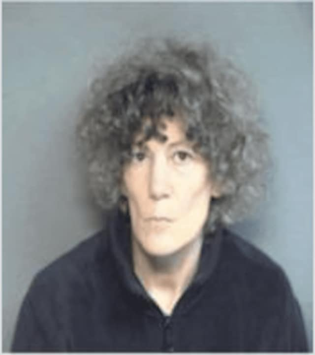 Susan Drucker is facing charges in connection with wandering through Stamford Hospital's maternity area Monday.