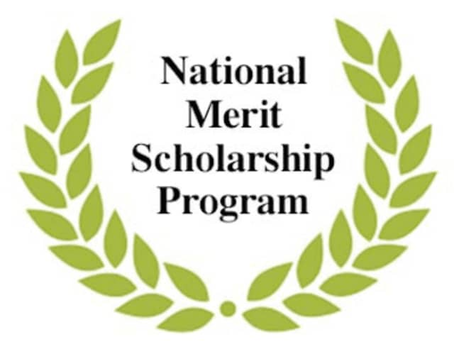 Fourteen seniors at Horace Greeley High School in Chappaqua have been named National Merit Scholarship Program semifinalists.