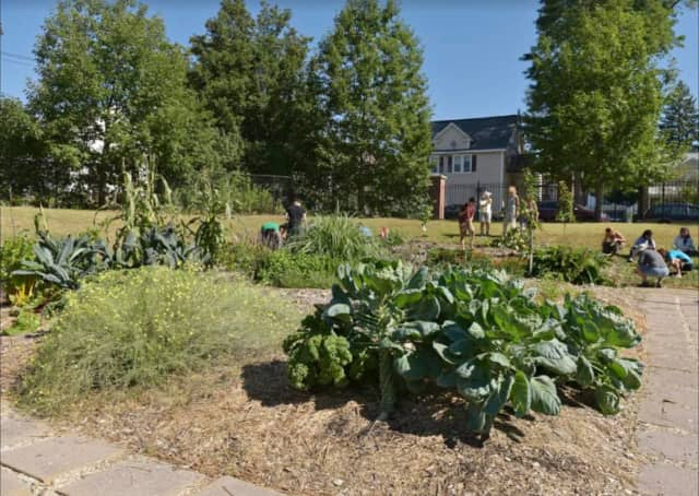 WCSU to host Permaculture Garden 'Community Day' on Friday, Sept. 23.