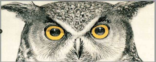 The Darien Nature Center ​will host its annual Hoot and Howl community event Oct. 30.