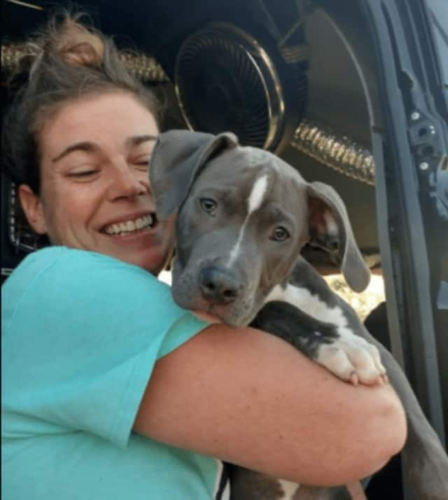 Grateful Doggies Freedom Transport brings rescue brings southern rescue pups to New Jersey for adoption.