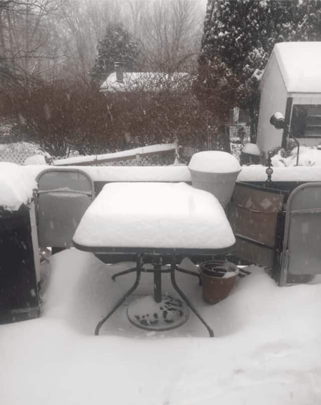 Tina Lynn of Dover Plains snapped this photo just before noon showing well over a half foot of snow accumulation.
