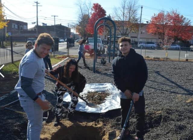 Students help beautify Bridgeport through one of the many programs run by Groundwork Bridgeport.