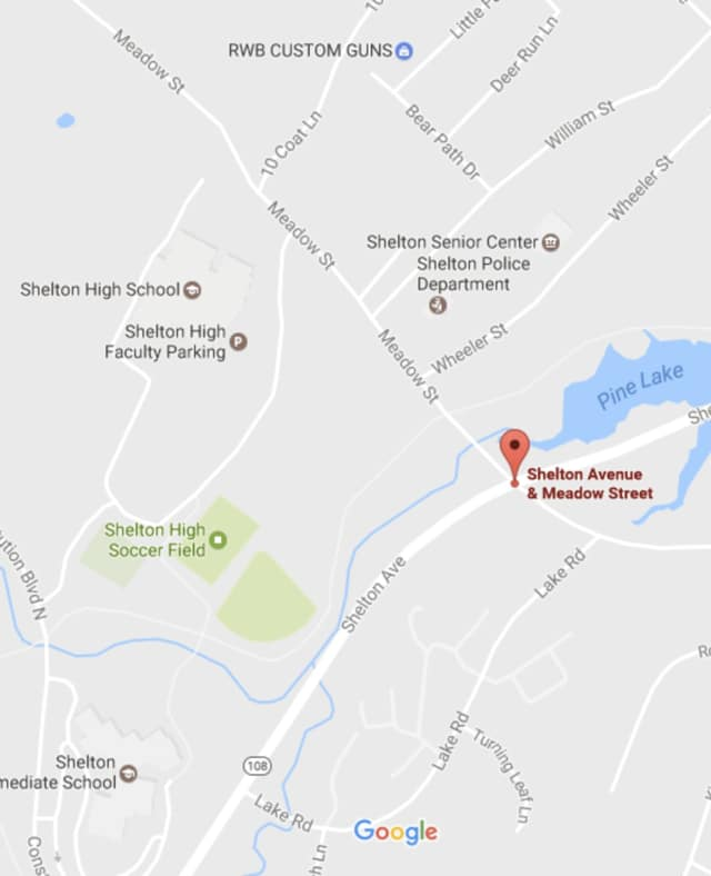 A fallen traffic light has closed the intersection of Shelton Avenue and Meadow Street.