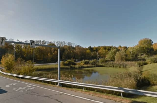 New York State police saved a disabled man from drowning in a pond.