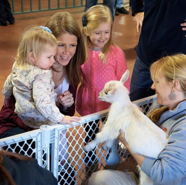 Thousands visit Beardsley Zoo in Bridgeport each year.