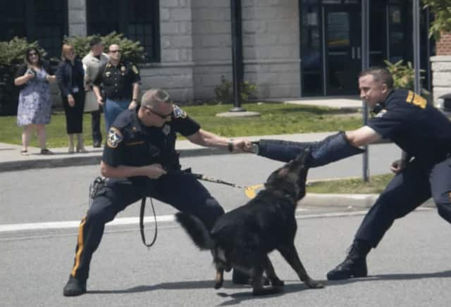 Bergen County Sheriffs Officers hold a demonstration with a K-9 officer in Englewood.
