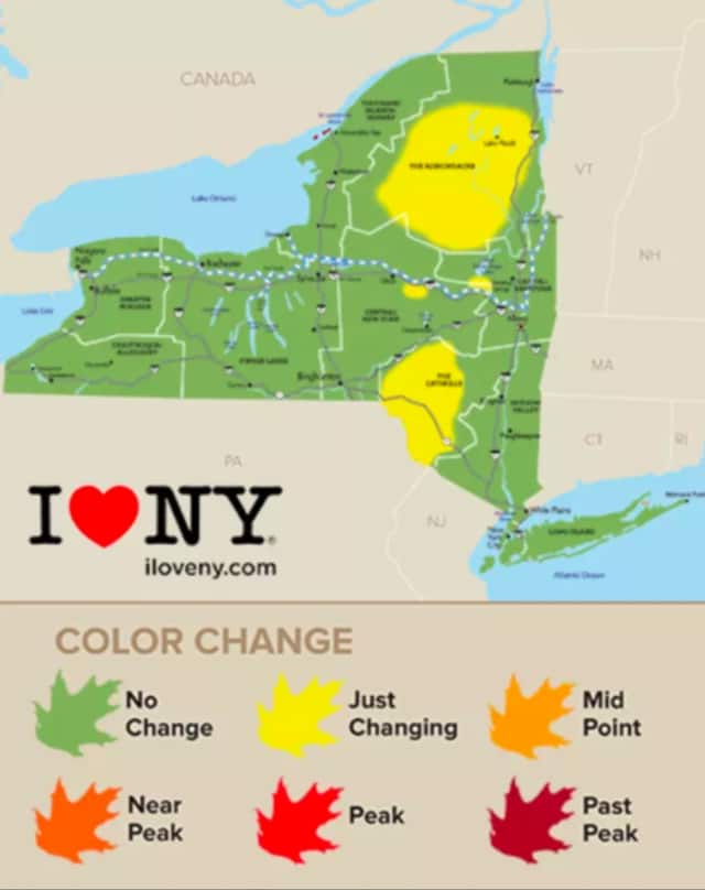 Conditions are prime for vibrant foliage across the Hudson Valley and all of New York, with some portions of upstate (shown in yellow) already seeing change.