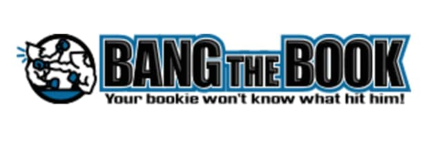 The owner of Bang the Buck, a gambling website, pleaded to tax evasion.
