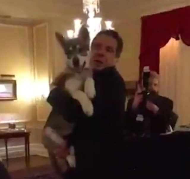Gov. Andrew Cuomo with his new dog, Captain.