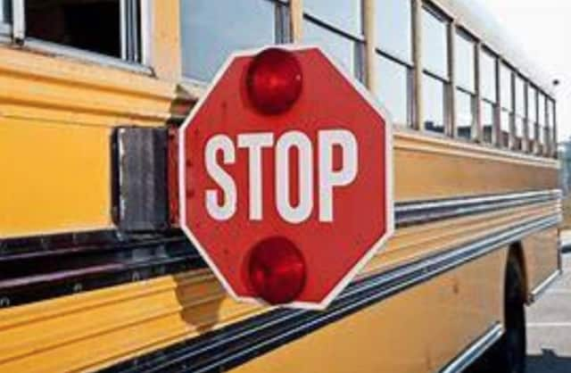 A Rockland resident was cited for passing a parked school bus and striking the flashing stop sign as the driver picked up students.