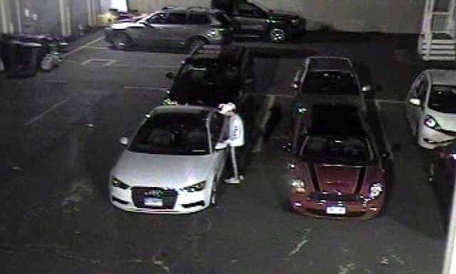 The Norwalk Police Department is asking the public's help in finding this suspect who burglarized a car.