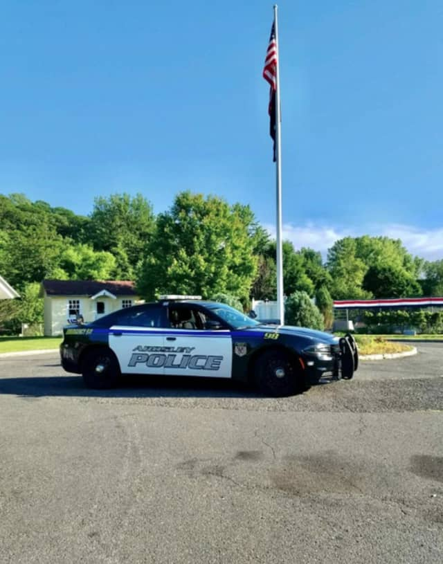 The Village of Ardsley Police Department took swift action after a swastika was found painted on a road sign.