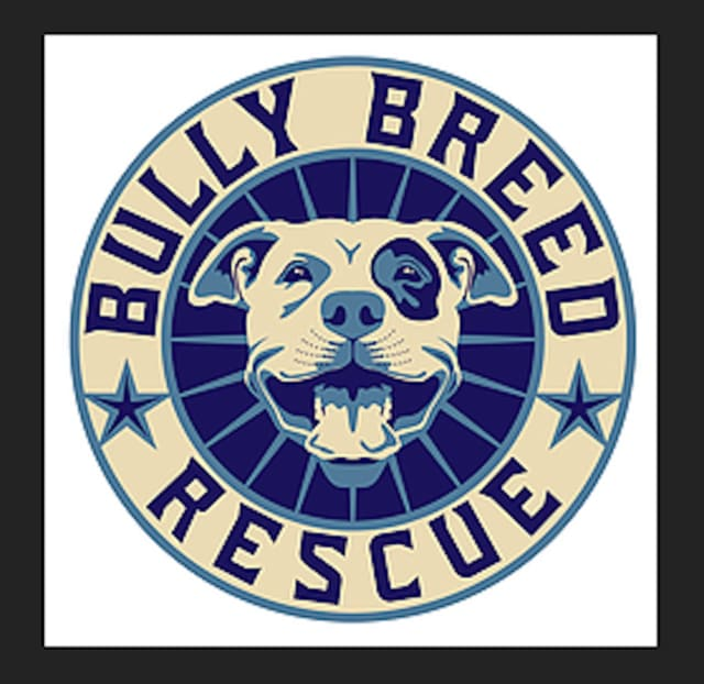 Bully Breed Rescue, Inc.