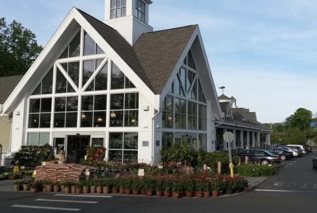 A woman's wallet was stolen while shopping at the Darien Whole Foods.