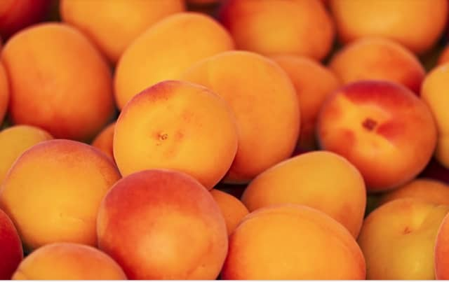 Yonkers-based Jac. Vanderberg has announced a recall of thousands of pounds of fruit.