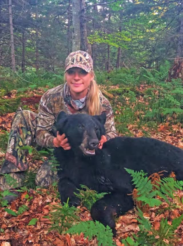 In total, 1,295 black bears were harvested in New York State over the hunting season.