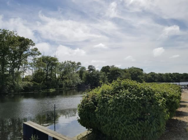 A man's body was found in the Peconic River in Riverhead.