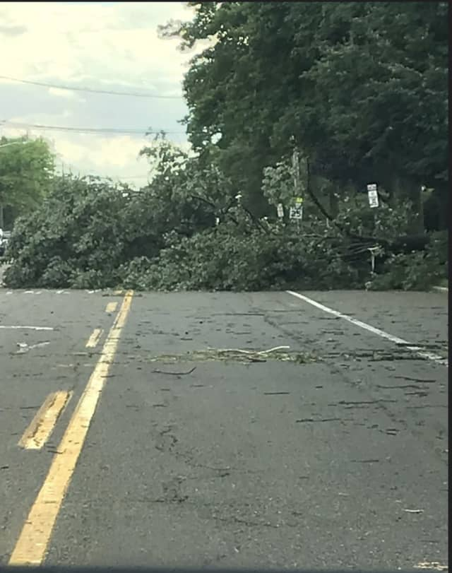 Roadways remain blocked due to numerous trees down.