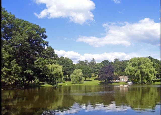 A man was found drowned at Downing Park.
