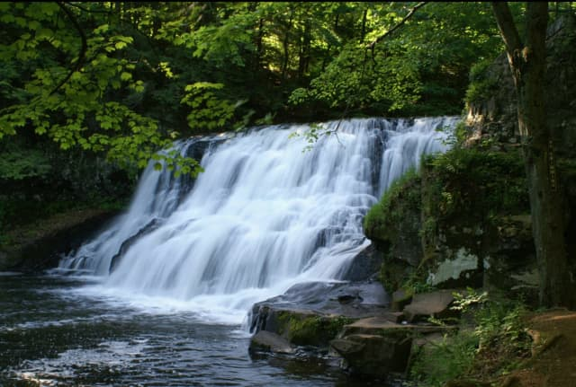 Wadsworth Falls State Park in Middletown was among the parks closed due to overcrowding.