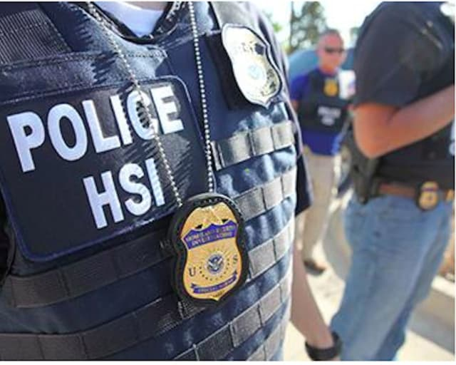 ICE's Homeland Security Investigations