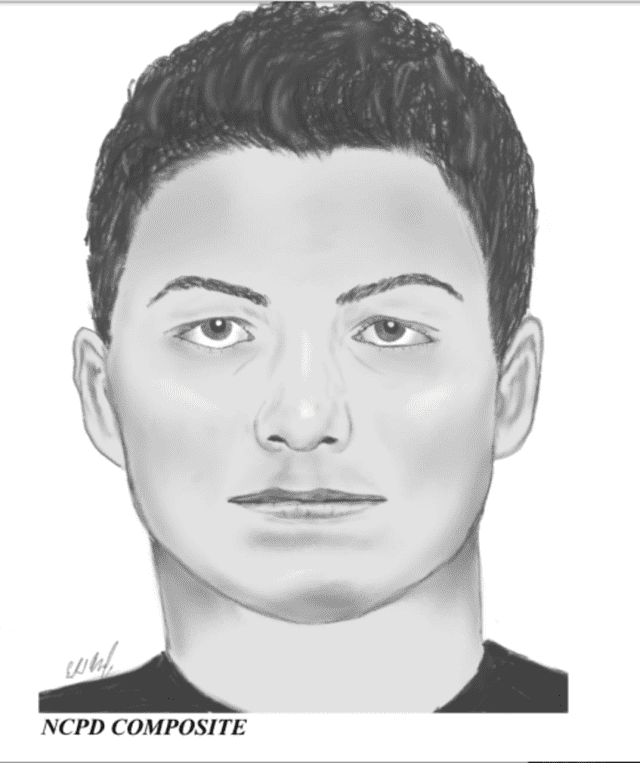 Police are asking the public's help in identifying the man shown in this composite sketch who is accused of grabbing a teenage girl at a Long Island park.