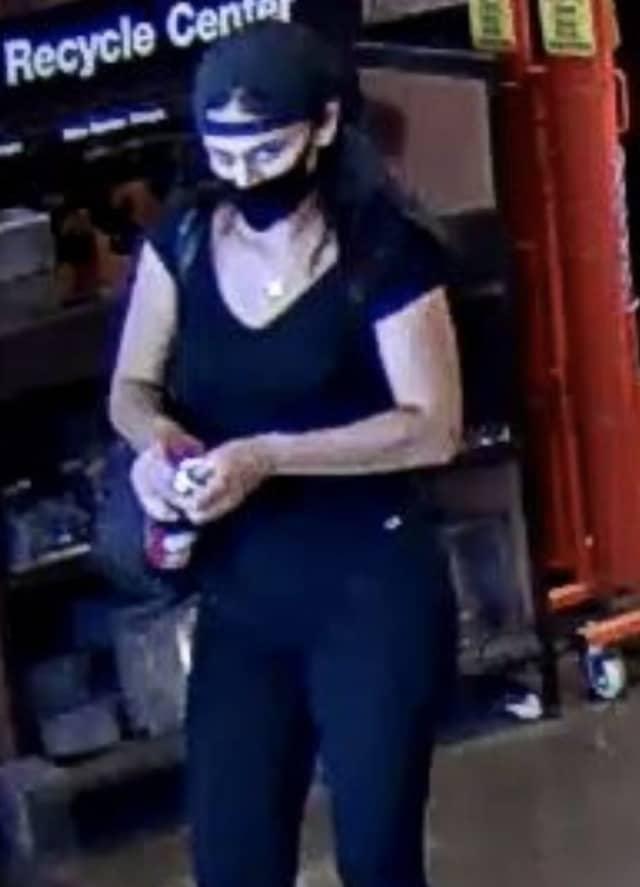 A woman is wanted after allegedly stealing and using credit cards on Long Island.