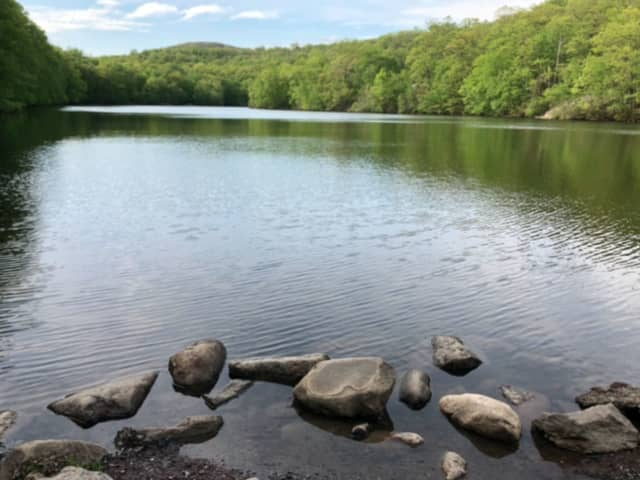 Ramapo Mountain State Forest is one of more than a dozen state parks that remains closed due to damage from Tropical Storm Isaias, officials said.
