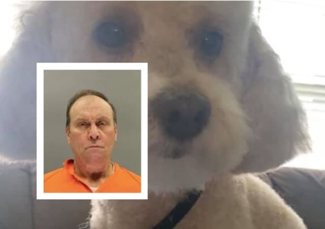 William Stroemel was sentenced to five years in state prison for shooting Toby, a pom-poodle mix, in the head, killing him, authorities in Burlington County said.