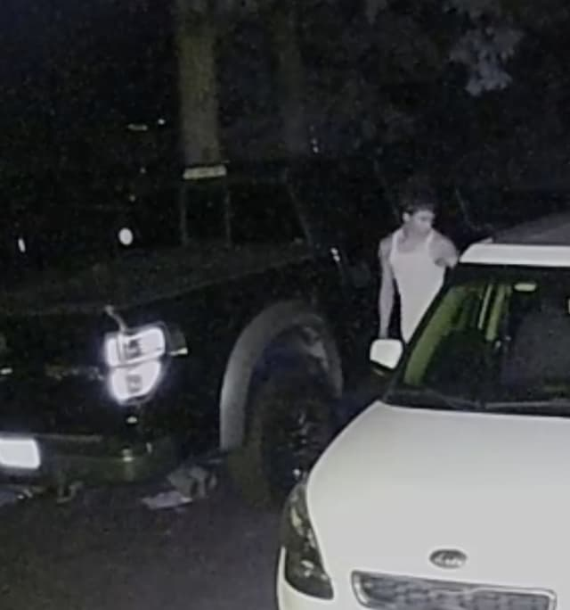 A man is wanted after stealing a parked car in Bohemia last year.