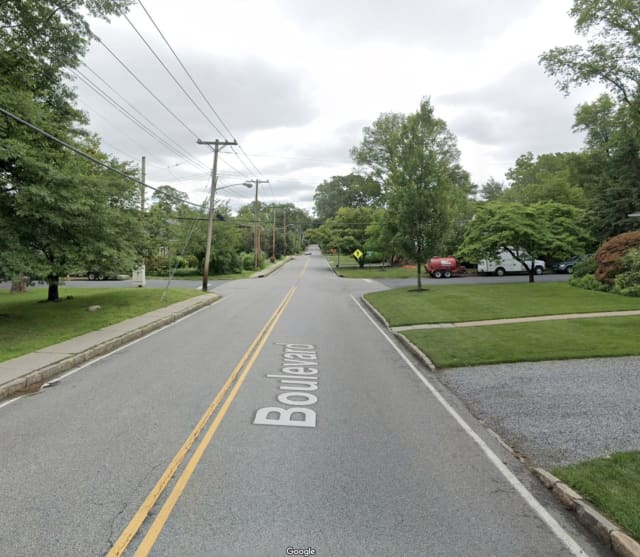 A dog was attacked on Boulevard in Scarsdale.