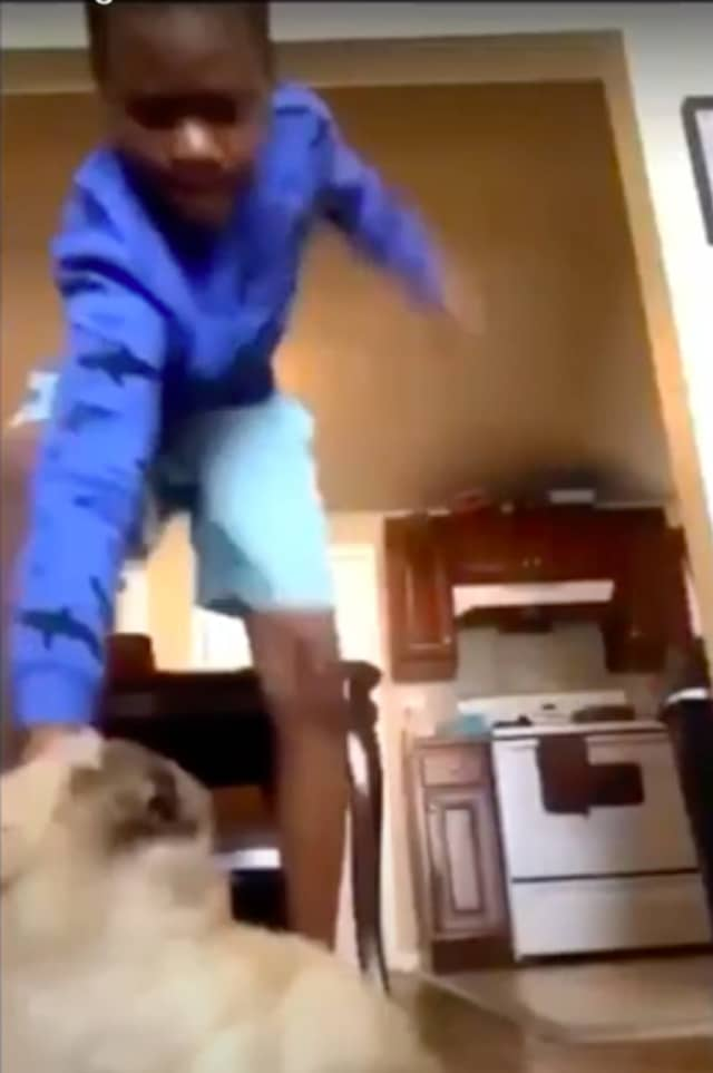 The horrifying video shows the boy holding the dog down as he hits him repeatedly, then picks the animal up and slams his body against the floor.