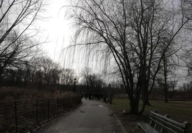 Kissena Park, the area of the murder.