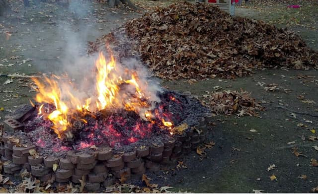 Fire pit (stock photo)