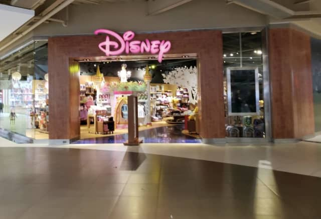 The Disney Store in the Palisades Center in West Nyack has closed permanently.