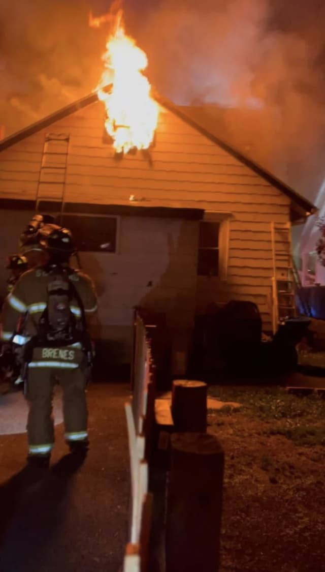 Multiple pets were saved in Stamford when a fire broke out in an area home.