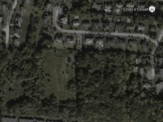 A developer aiming to build on a 30-acre site off North Main Street in New City was issued a violation Wednesday for knocking down a tree in a protected wetland.