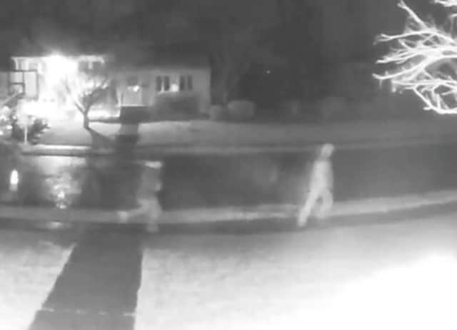Dumont home surveillance video shows car burglars running from scene.