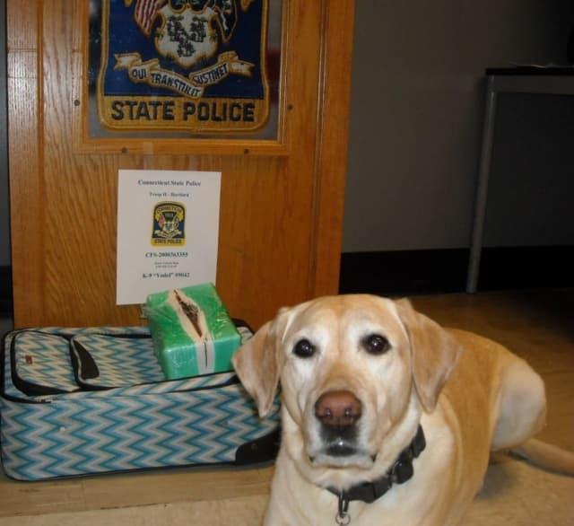 A police dog named Yodel made a huge drug bust on I-91 on Thursday, Aug. 20.