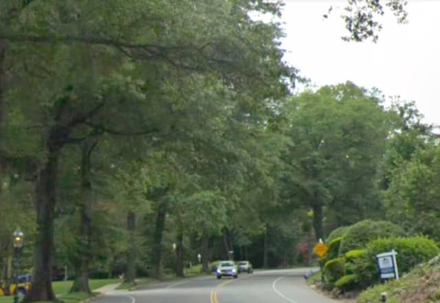 A bear was reported roaming in the area of Wyoming Avenue in South Orange