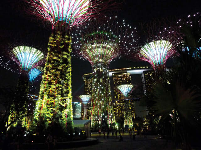"""The New York Botanical Garden's 17th annual """"Orchid Show"""" includes a recreation of the Supertrees in Singapore's Gardens by the Bay."""