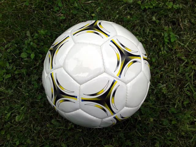 Nyack Middle School is looking for sports balls: Alan and Bob (the school's security guards) have put out a request for playground balls (soccer, volleyballs footballs, etc.).